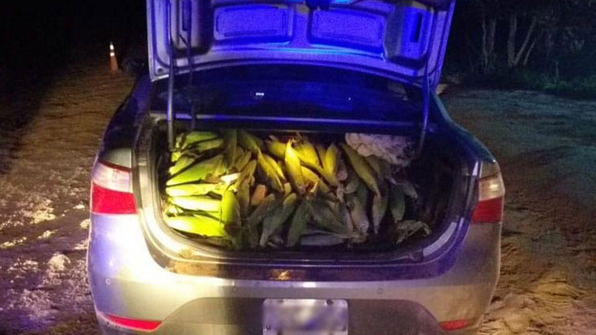 Tres jóvenes fueron detenidos en Tartagal por robar choclos en la cuarentena.