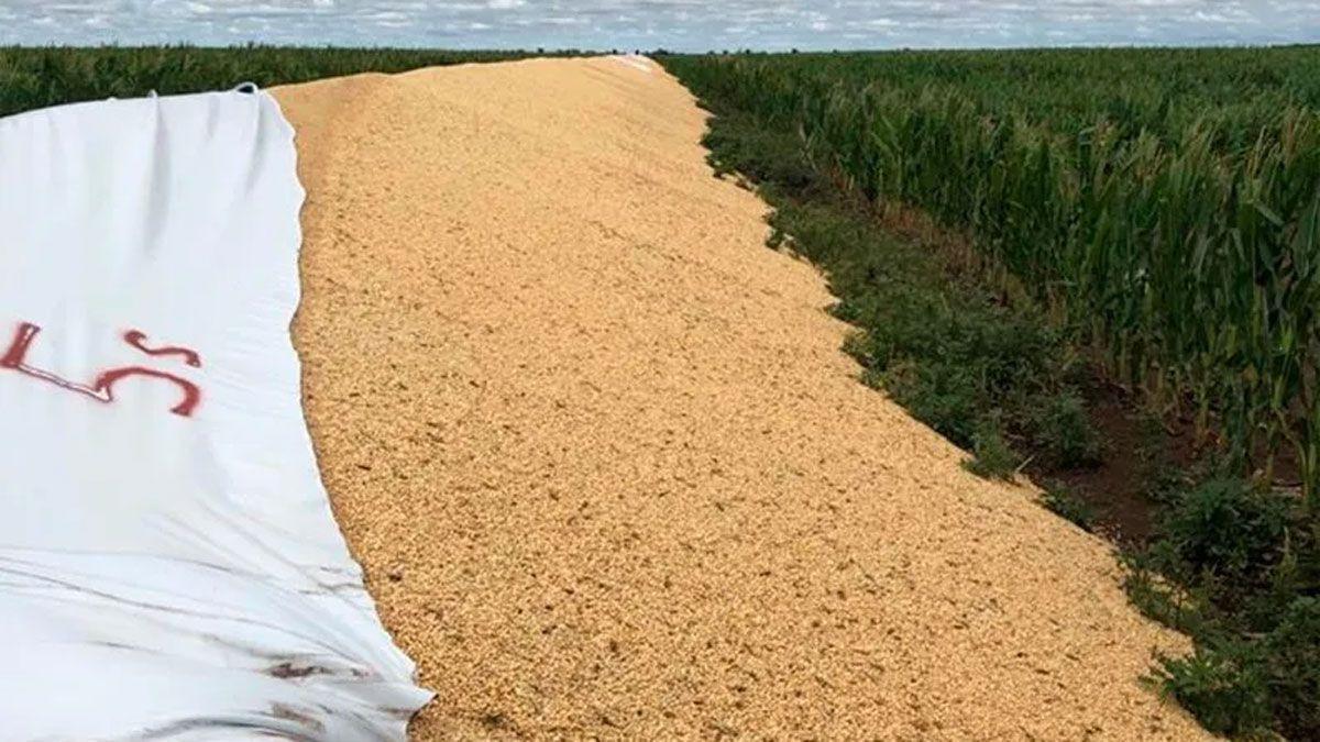 Entidades de la cadena agroindustrial respaldaron el proyecto para combatir los actos vandálicos.