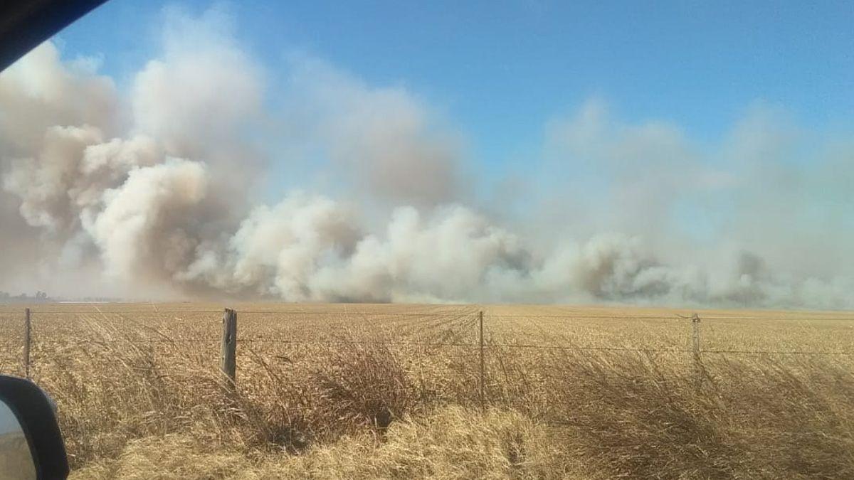 Un incendio afectó el campo del presidente de la Rural de Río Cuarto