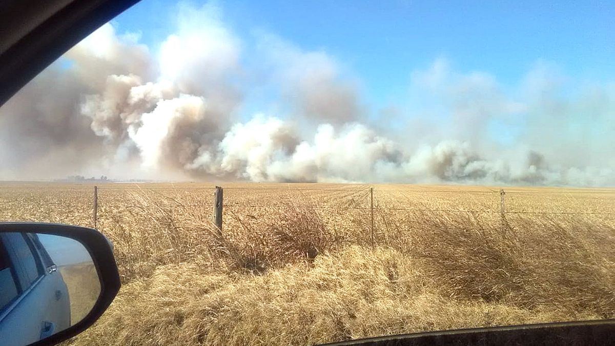 Son muchas las similitudes con otros casos, dijo Tonello sobre el incendio en su campo