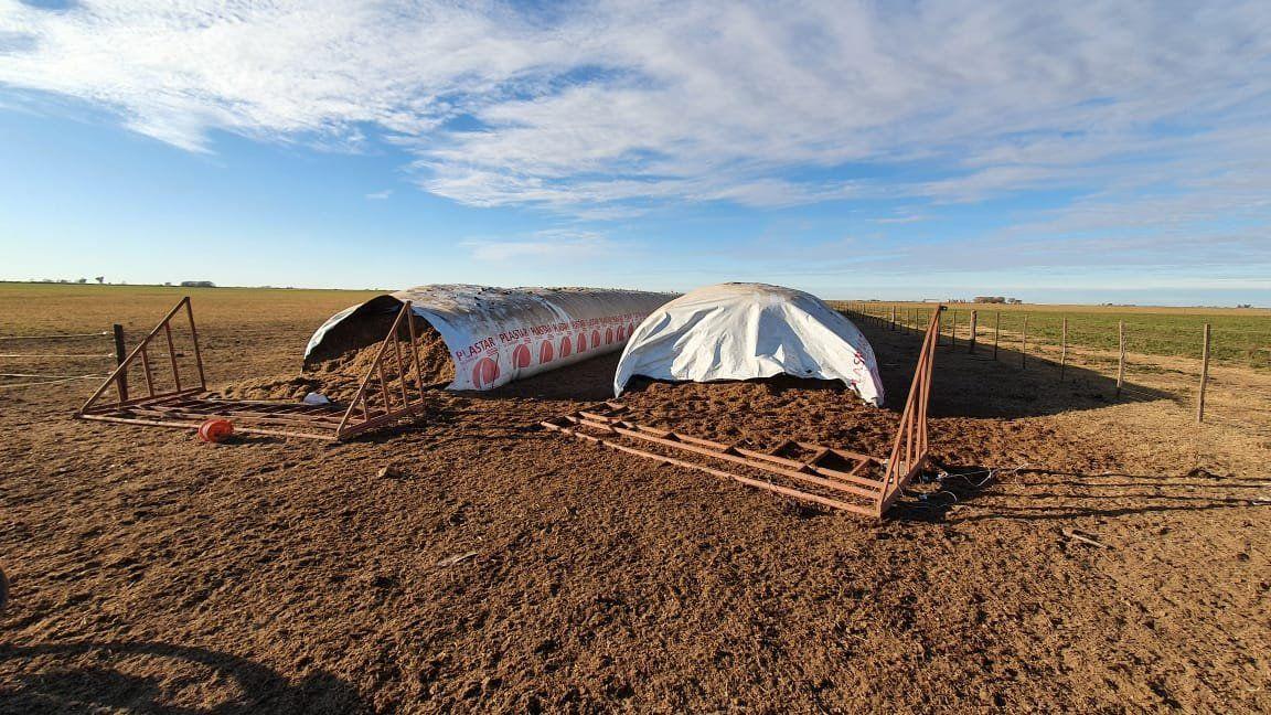 Otro ataque en un campo de la región: rompieron un silobolsa al sur de Coronel Moldes