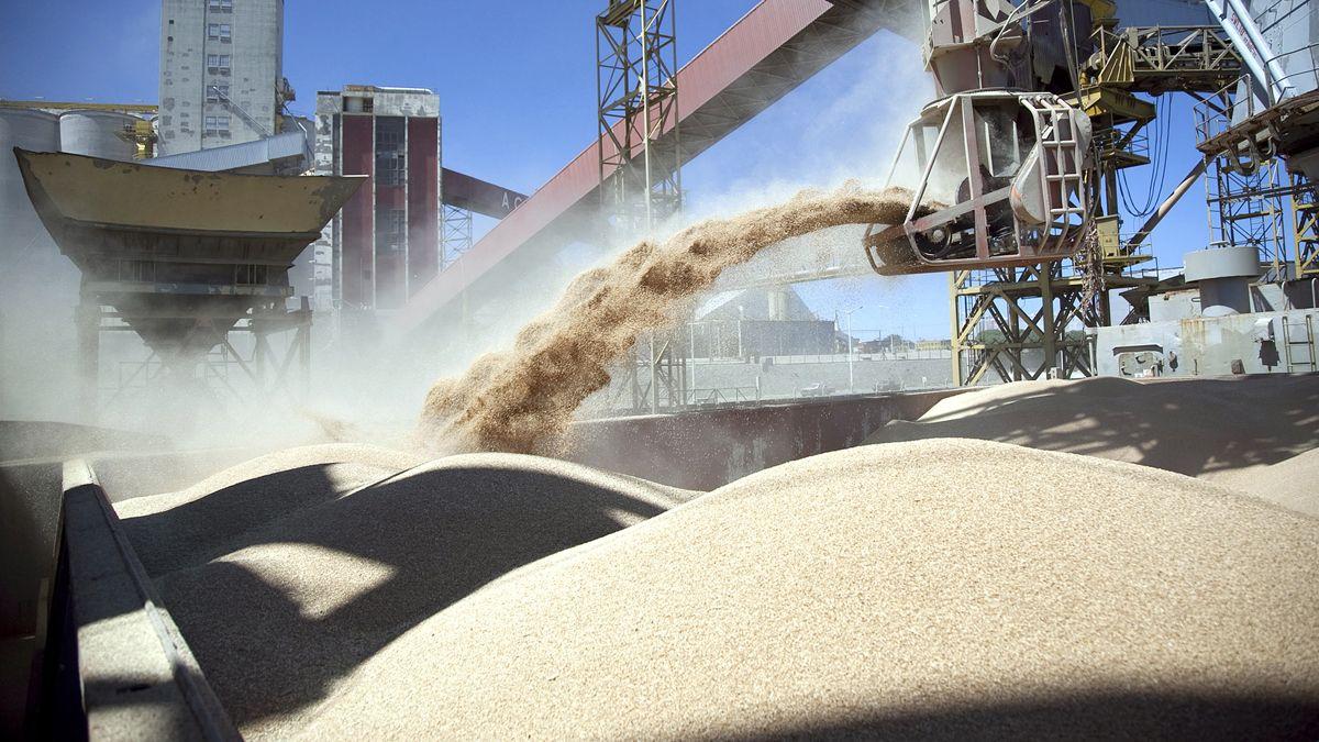 Las exportaciones del complejo agroindustrial garantizan los dólares para un país que cuando crece sufre restricción de divisas.