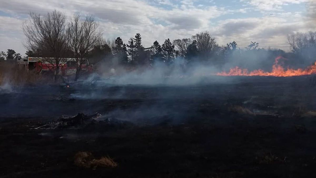 Bomberos de La Carlota trabajaron en un incendio a la vera de la ruta 8.