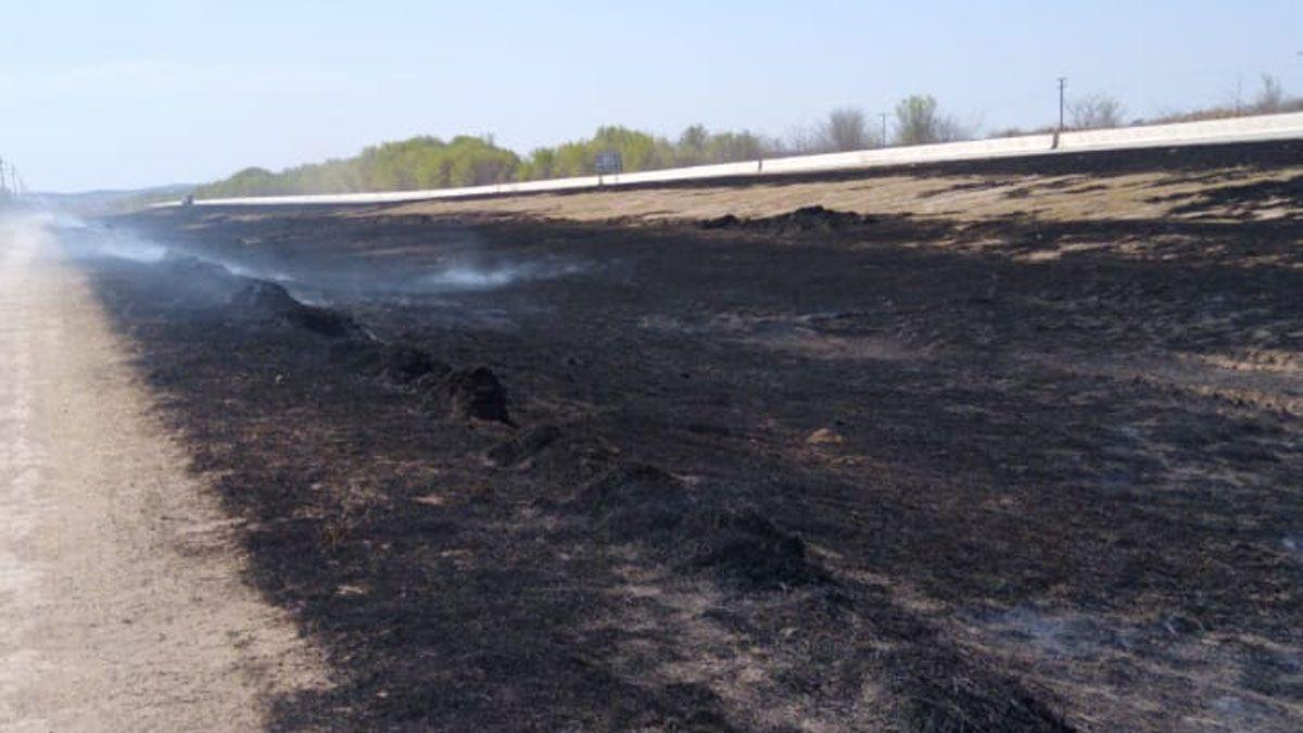 El fuego quemó unas 2 hectáreas de pastizales.