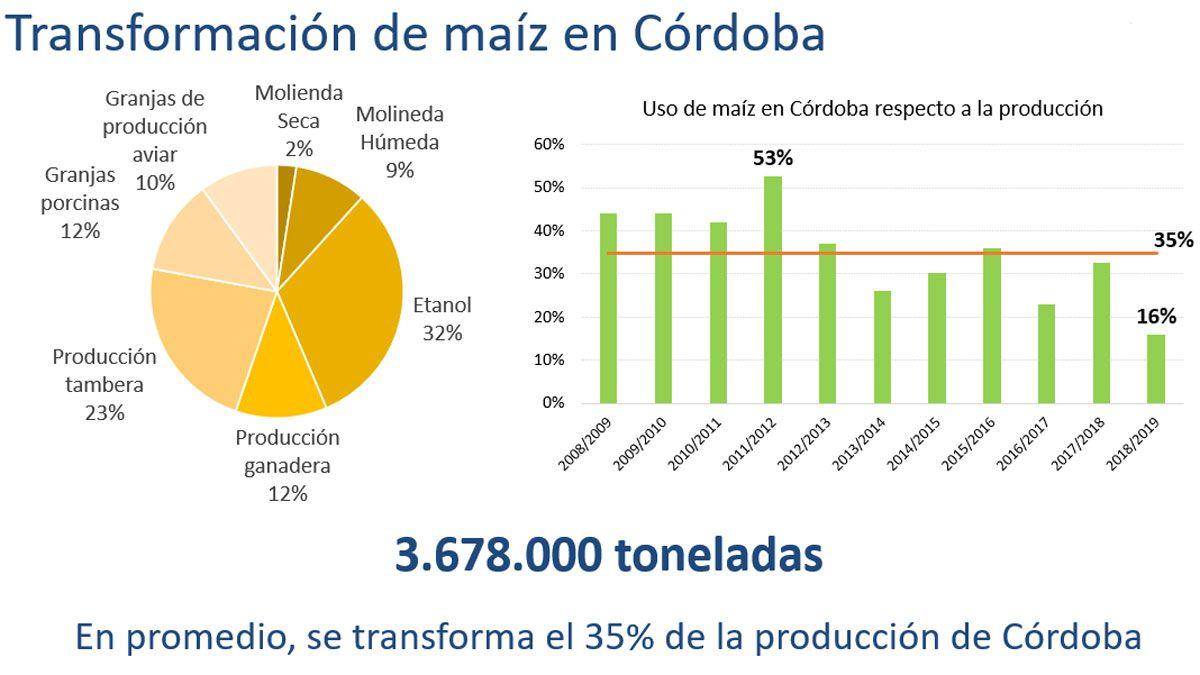 El 70% de la producción de maíz se exportará como grano
