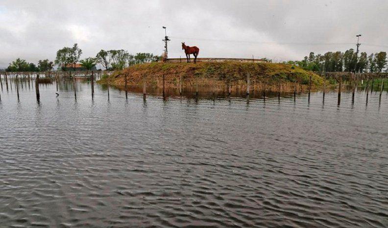 Ucacha: la escuela rural está aislada hace una semana por las lluvias