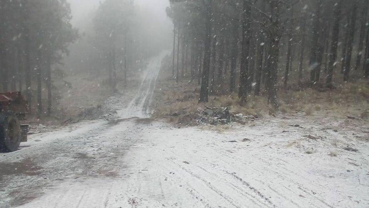 La nevada registrada en Guacha Corral.