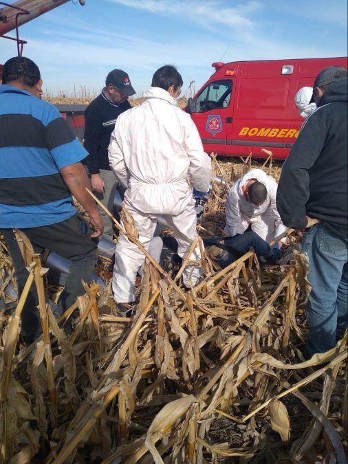 Un trabajador rural resultó con lesiones graves en Arroyo Cabral