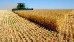 El relanzamiento de esta herramienta permite al BNA aumentar la oferta de productos financieros para personas humanas y jurídicas que se dedican a actividades agrícola-ganaderas