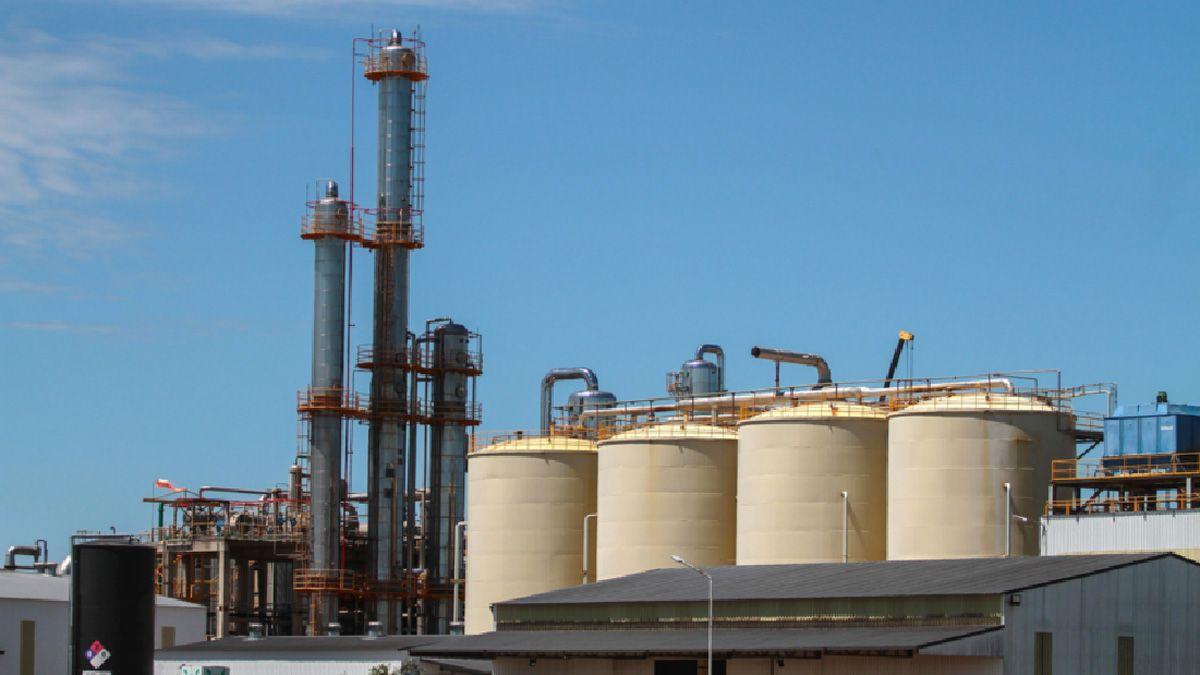 Las industrias que producen etanol a partir de maíz frenarán desde hoy los despachos para cortar las naftas por la falta de precios.