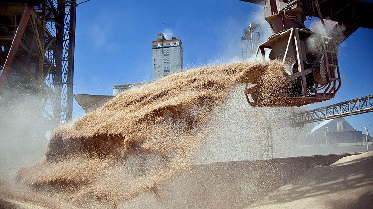 Por la suba en los granos, en enero las exportaciones crecieron 32,6%