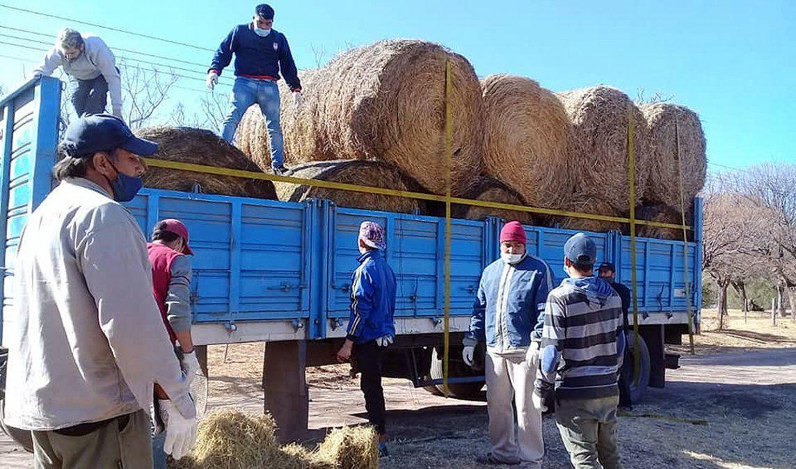 Berrotarán donó un camión de alimentos para animales afectados por los incendios