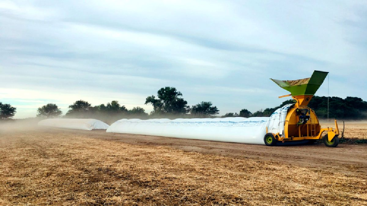 Los productores agropecuarios aseguraron que no hay una demora en la liquidación de granos debido a que necesitan fondos para pagar compromisos asumidos a cosecha o de insumos para iniciar la fina.
