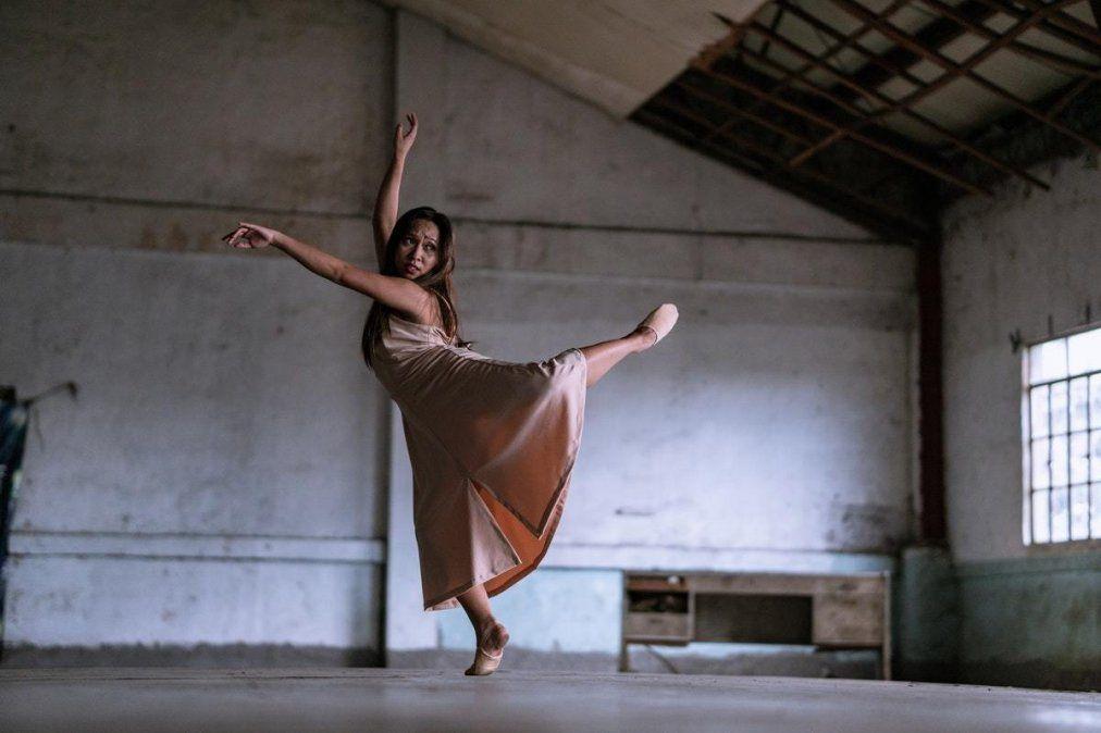 Del encuentro virtual participaron referentes de academias de danza de la ciudad.