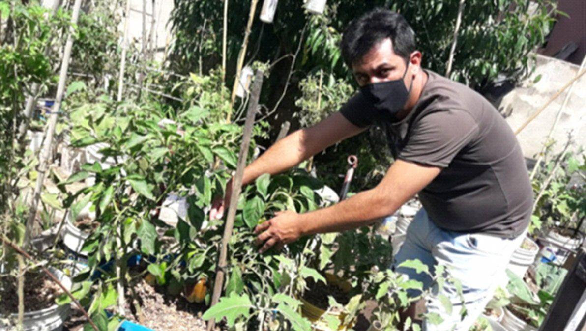 Cabrera: tienen huertas en sus casas para ayudar a la economía familiar