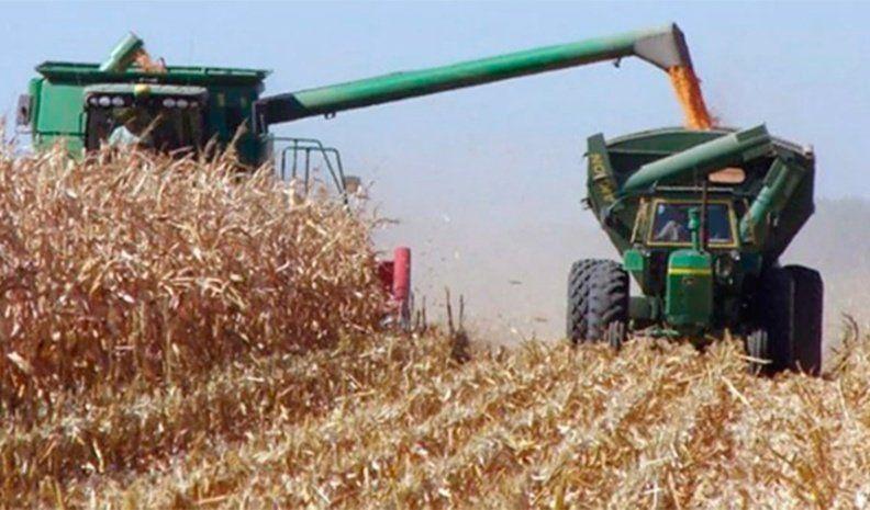 El sector agroindustrial consume el 6,7% de la energía del país