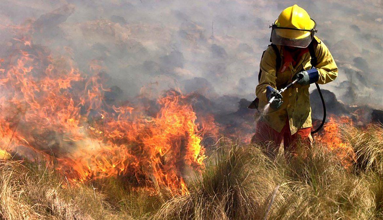 Incendios en Córdoba:Hay zonas que llevará 10 o 15 años recuperar