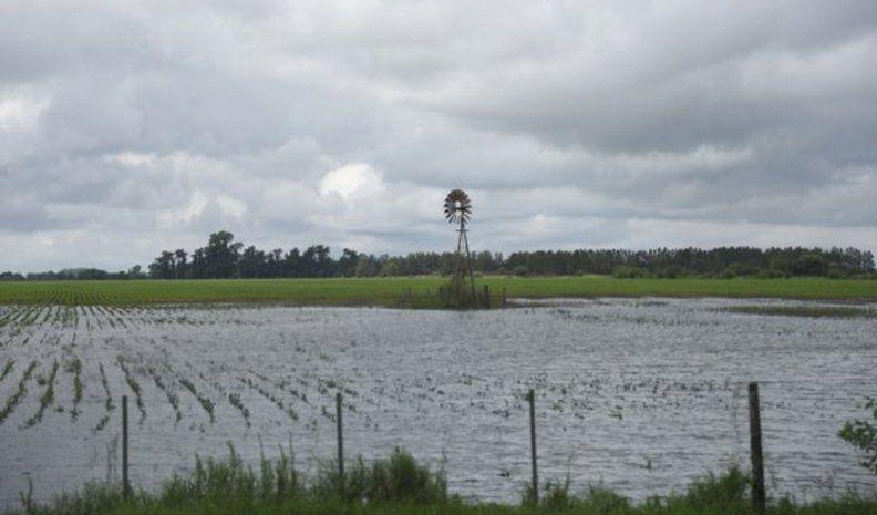 Las inundaciones ya suman más de 3 mil evacuados y pérdidas de cultivos de algodón y girasol