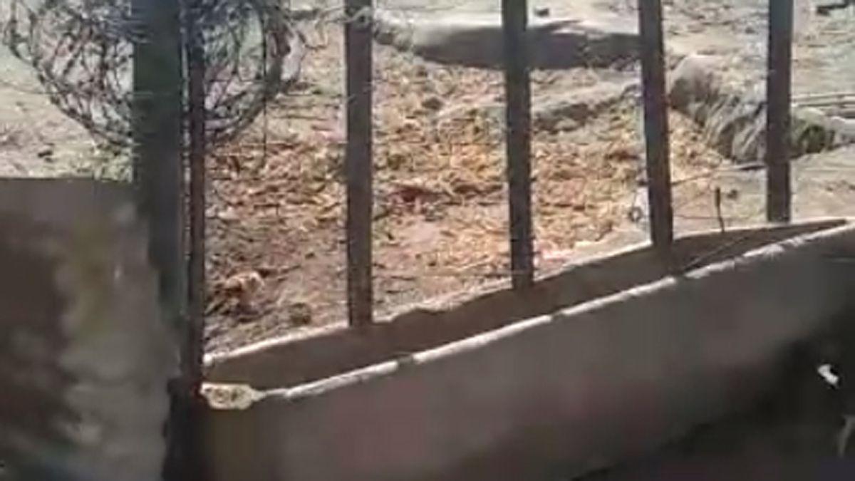 El pedido desesperado de una familia para acceder al agua