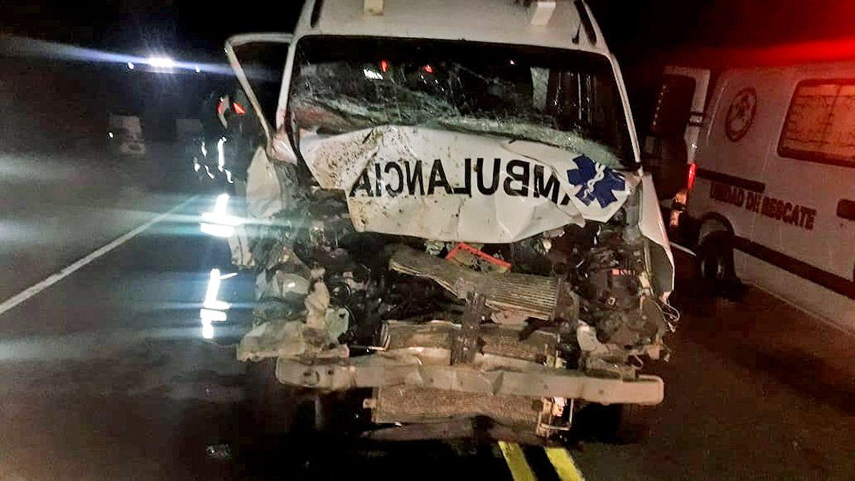 La ambulanacia impactó en el sector frontal contra el caballo.