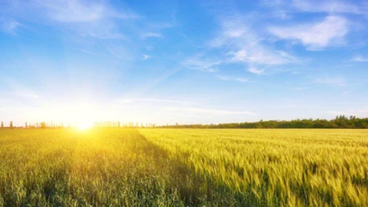 El Pronóstico Climático Trimestral es de gran utilidad para la toma de decisión a mediano y largo plazo.
