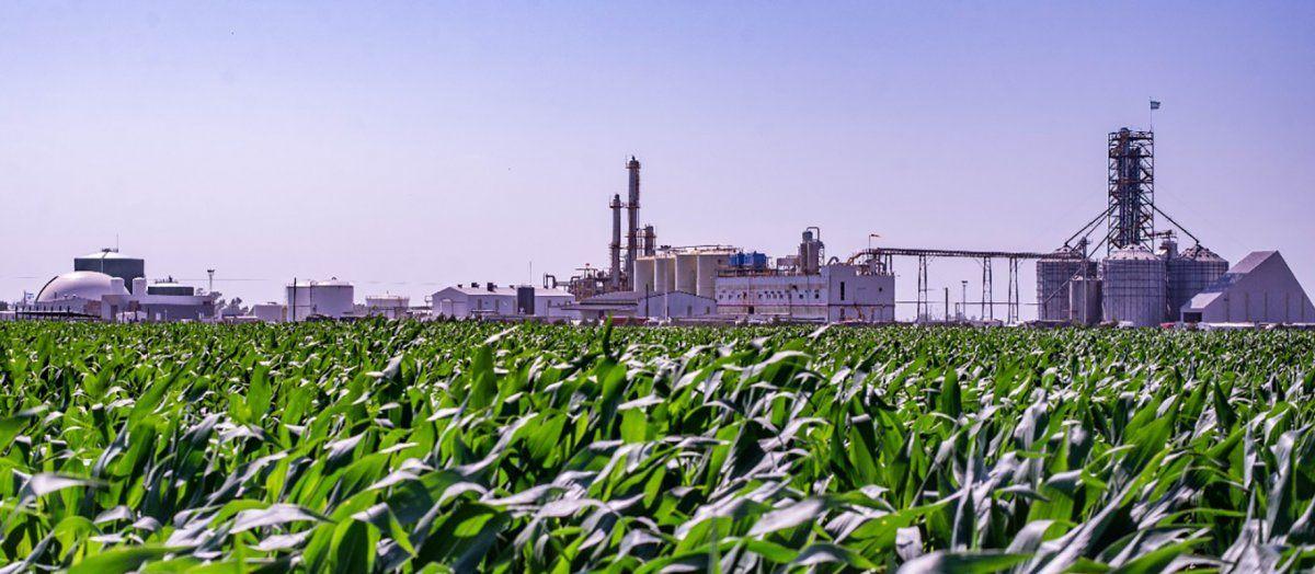 En plena crisis del sector, Córdoba busca exportar bioetanol a Brasil