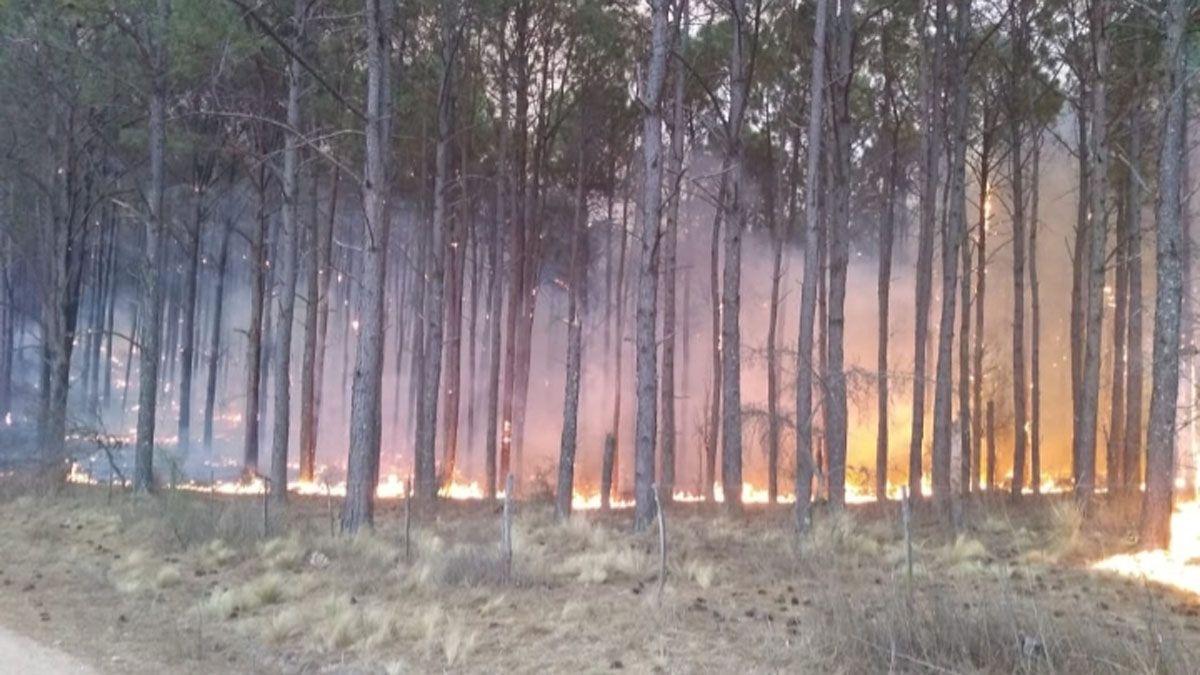 Las condiciones meteorológicas siguen siendo favorables para las llamas.