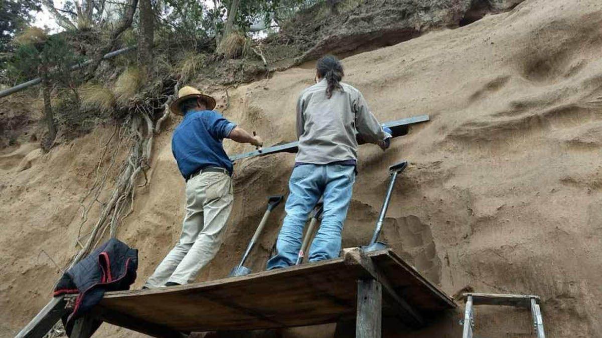 Encuentran restos fósiles de un gliptodonte en la localidad de Villa Ascasubi