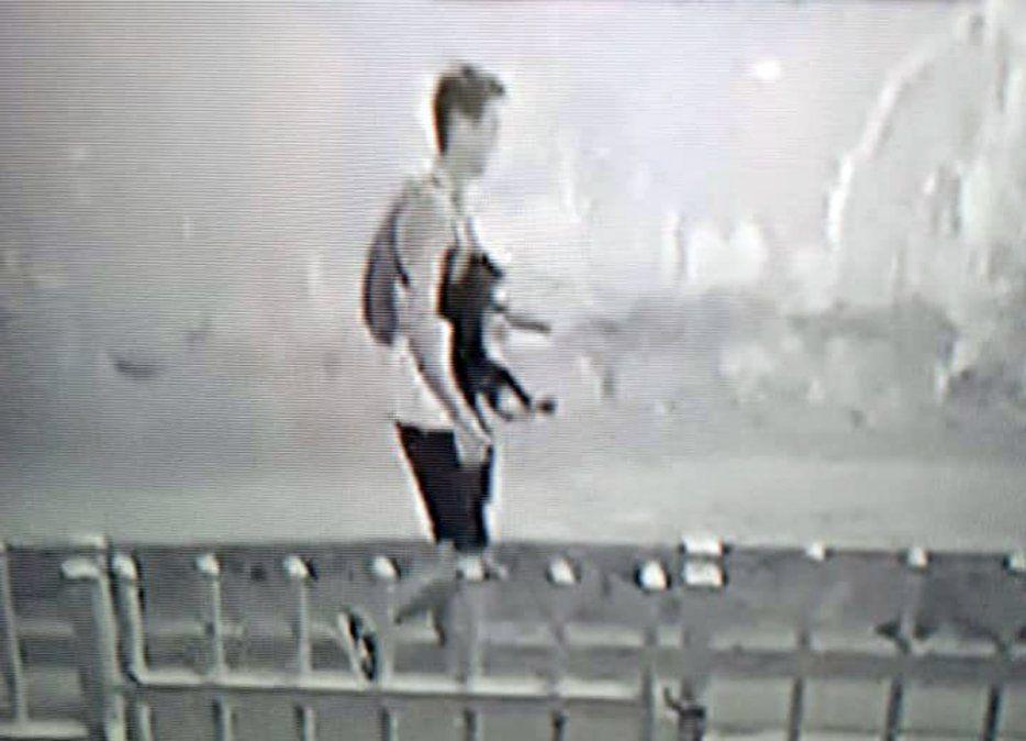 Insólito: robó una perra y fue capturado por las cámaras de seguridad