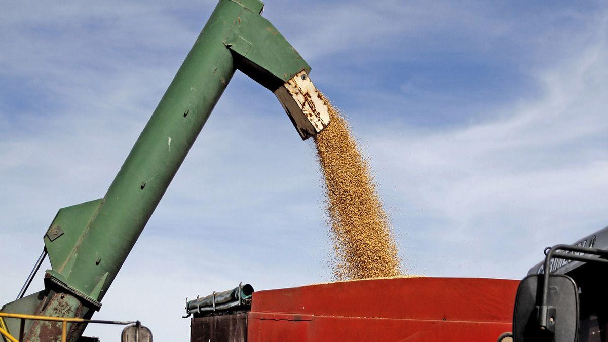Preocupación del sector agroindustrial por posición argentina ante el Mercosur