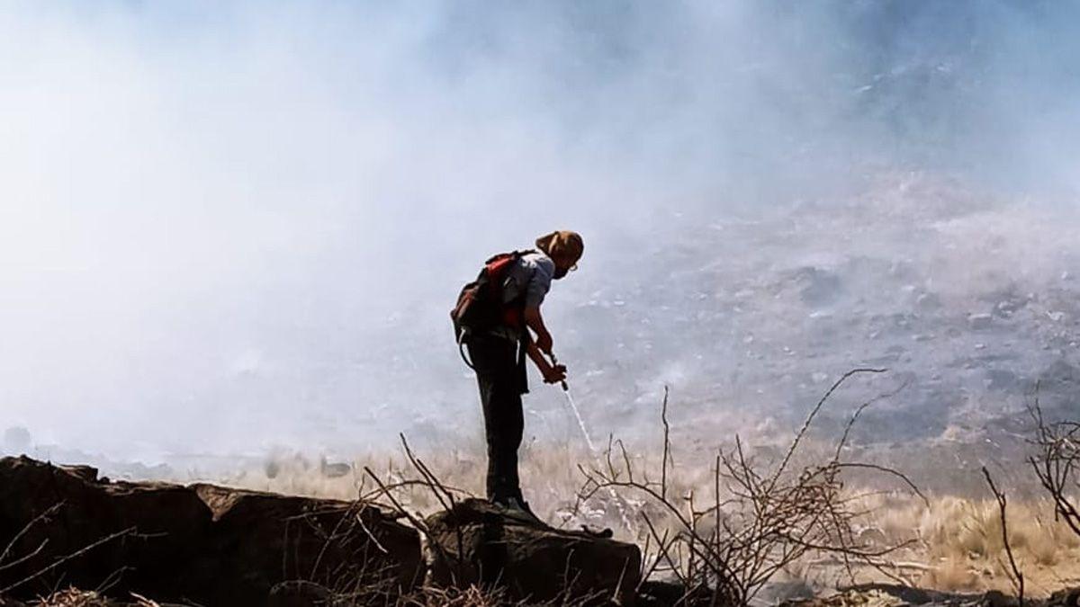 Las condiciones climáticas dificultan el combate contra las llamas.
