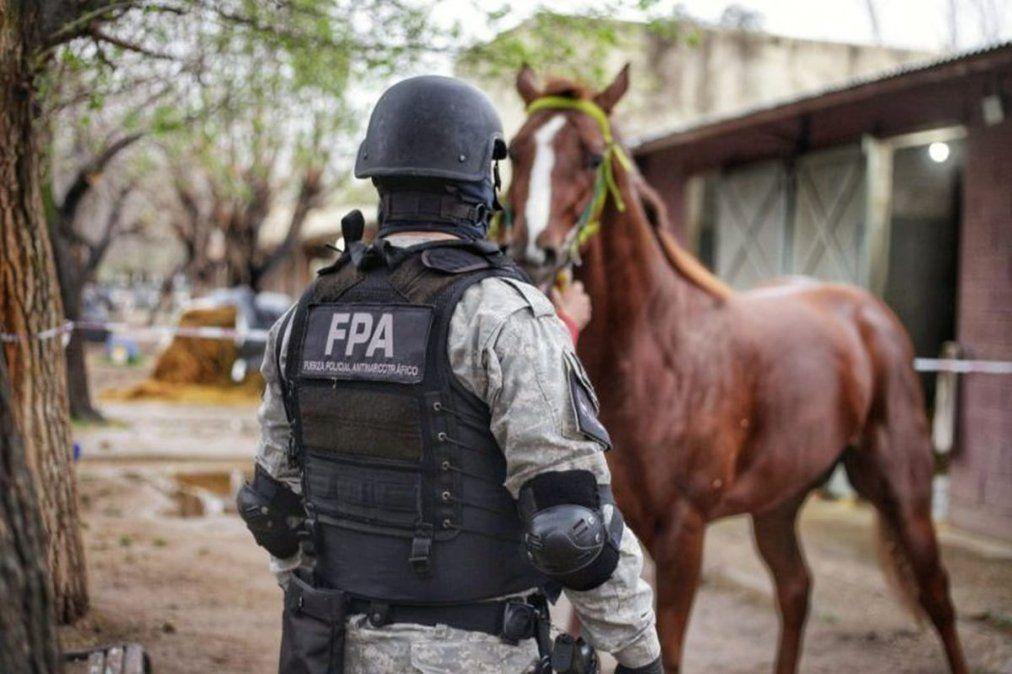 FPA secuestró más de 7.500 de dosis de cocaína, psicofármacos, una millonaria suma de dinero