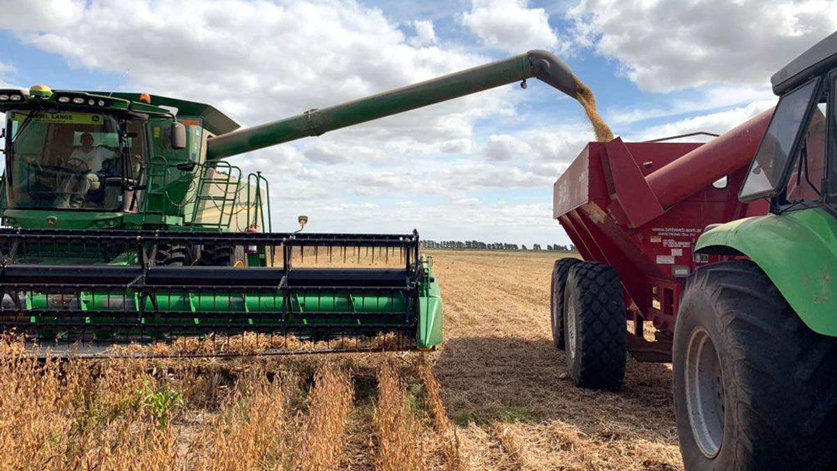 La cosecha de soja finalizó ya en todo el país. Según la Bolsa porteña
