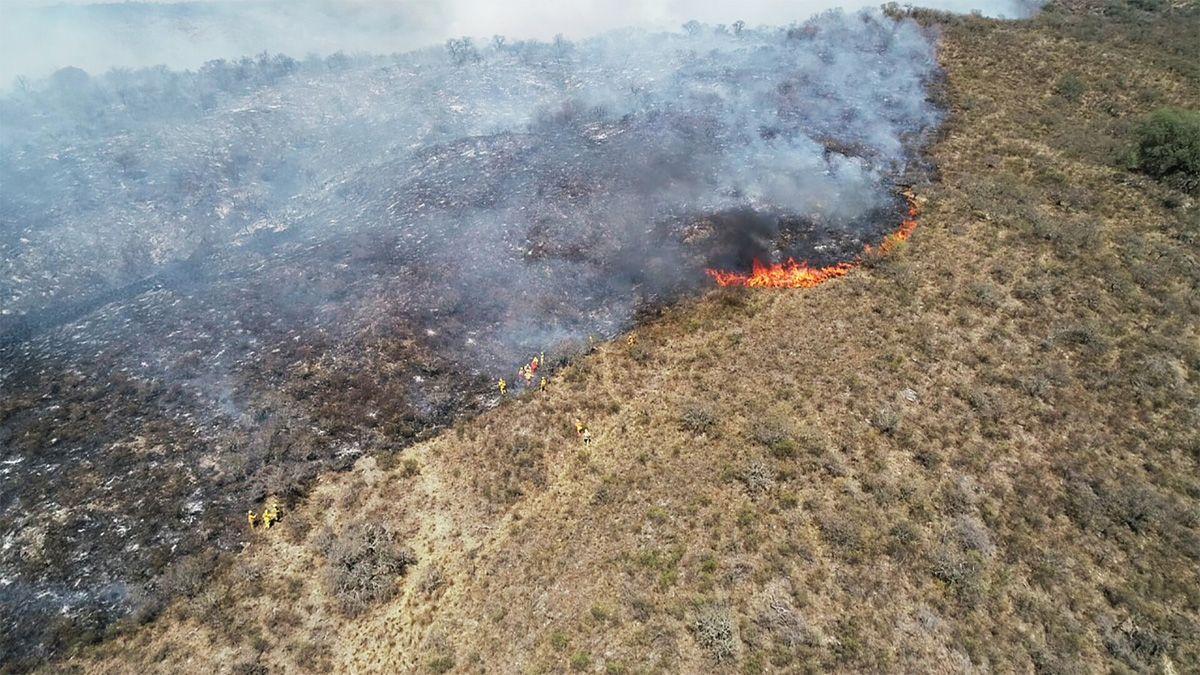 El fuego ya ha afectado 100 mil hectáreas y unas 770 mil en los últimos 20 años