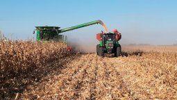 El departamento Río Cuarto es el principal productor de maíz del país. Y de ese cereal se derivan muchos eslabones productivos de peso en la región, como la carne vacuna, porcina, aviar, los biocombustibles o las fábricas de alimentos balanceados.