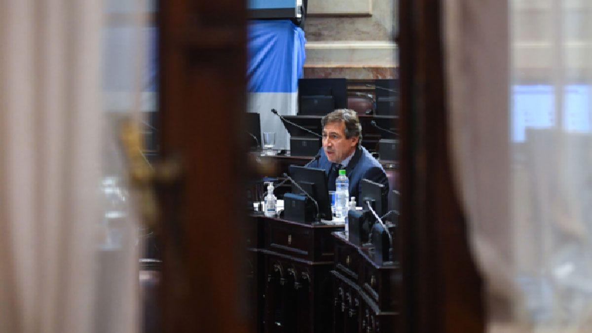 El senador Naidenoff