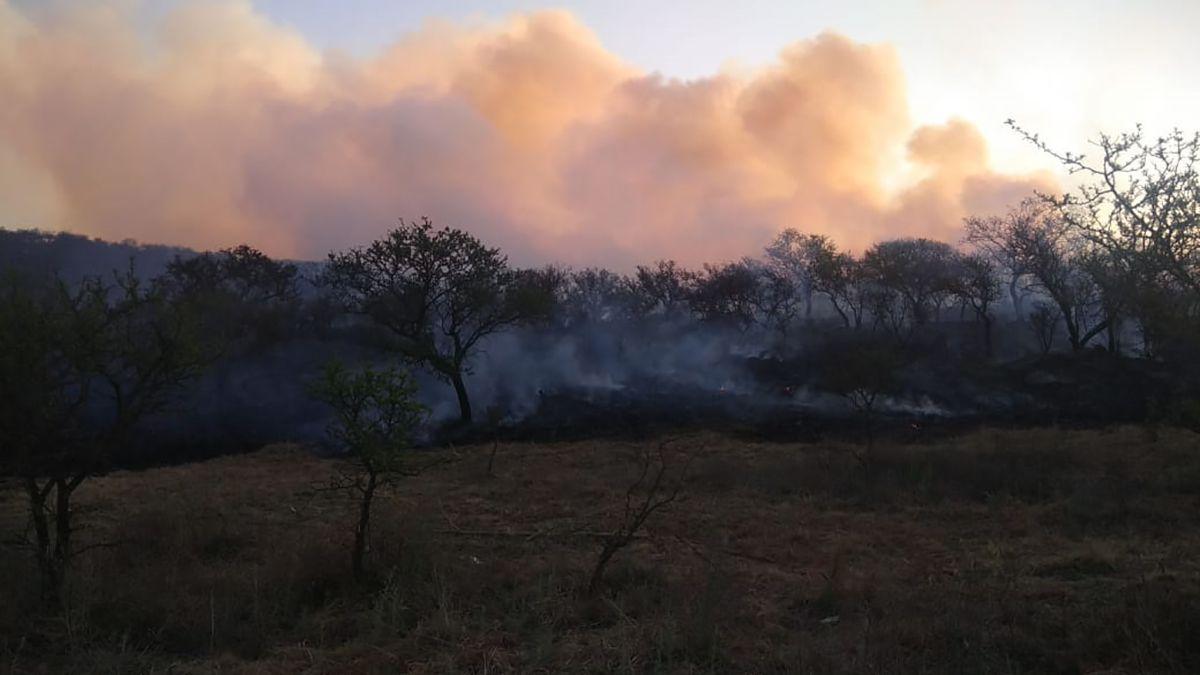 Nuevos incendios en Las Albahacas