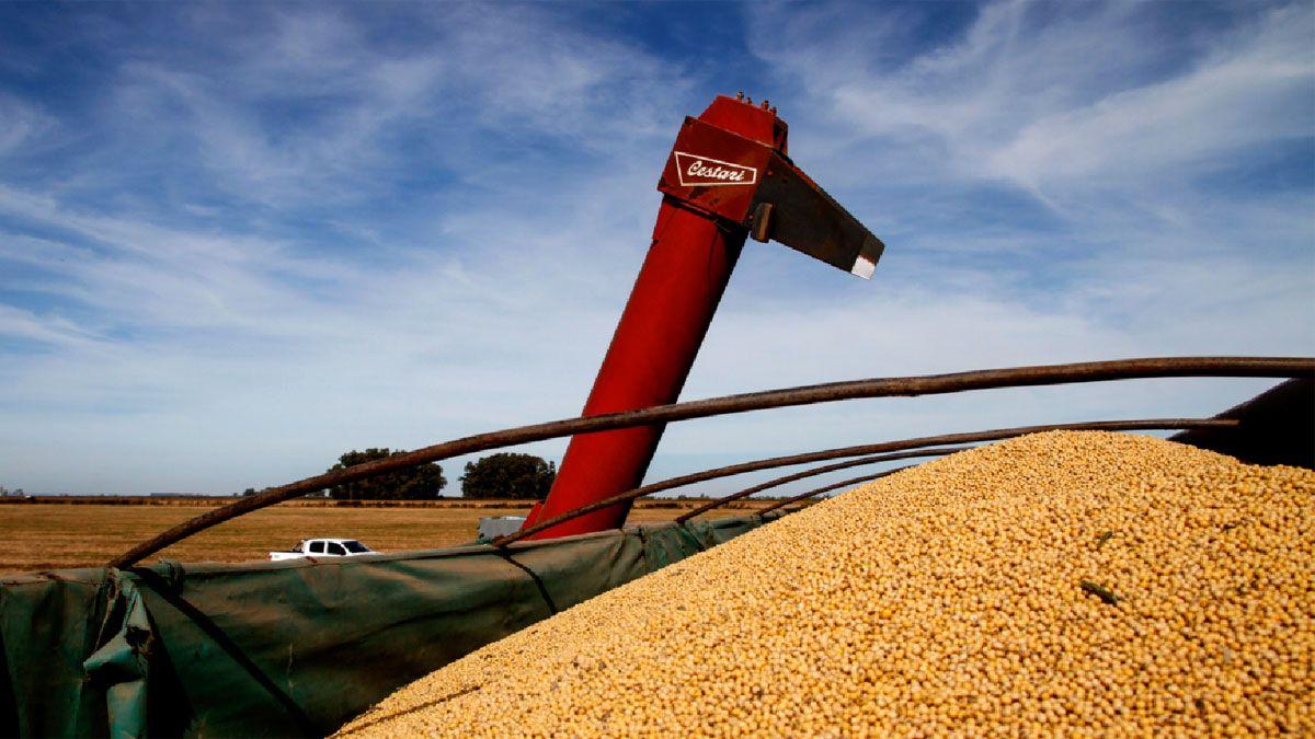 Los productores todavía conservan unos 18 millones de toneladas de soja en los campos.