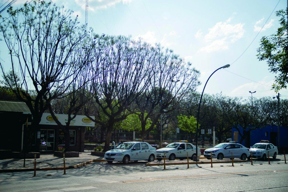 Taxistas desactivan el paro y tratarán el aumento de la tarifa