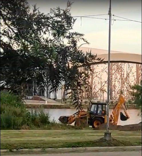 Villa Nueva: vecinos piden explicaciones al Municipio por obras que dañan el bosque nativo