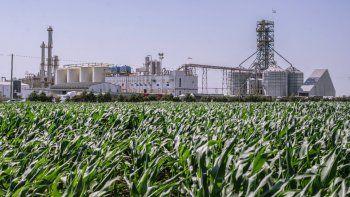 Bioenergía: un Gobierno a contramano de su pueblo
