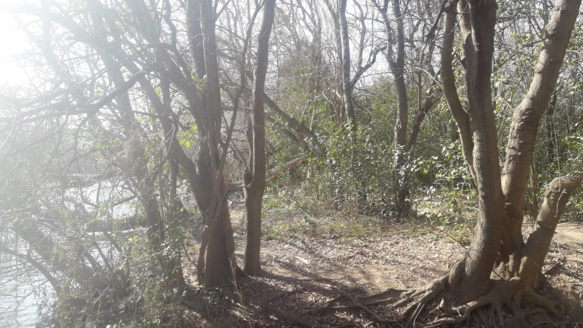 """Buscan """"conocer la ubicación local del Bosque Espinal Pampeano"""" y   """"concientizar sobre la importancia de su cuidado y preservación""""."""