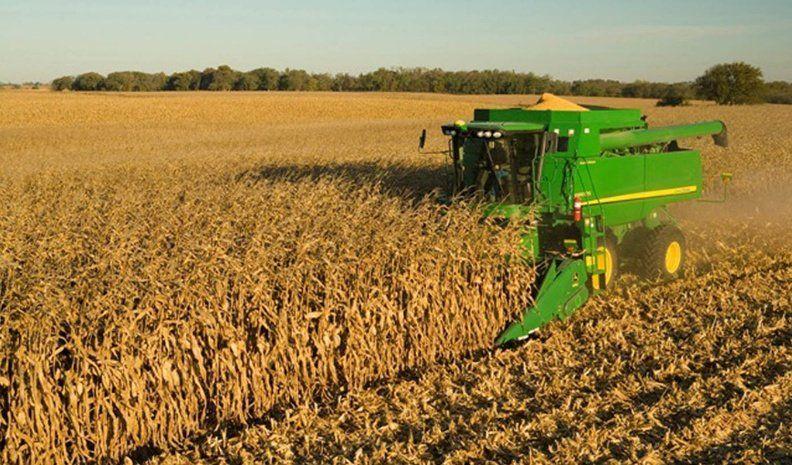 Las lluvias mejoraron las perspectivas de soja y maíz