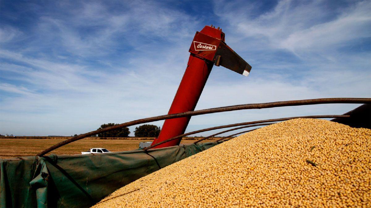 Hubo menores ventas al exterior de semillas y frutos oleaginosos (-US$ 472 millones) en el mes de octubre.