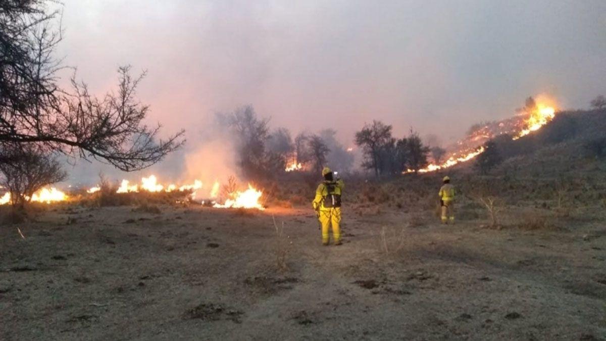 En la zona había alrededor de 150 bomberos trabajando.