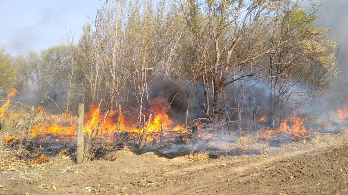 Lograron controlar el fuego en un campo al norte de Berrotarán