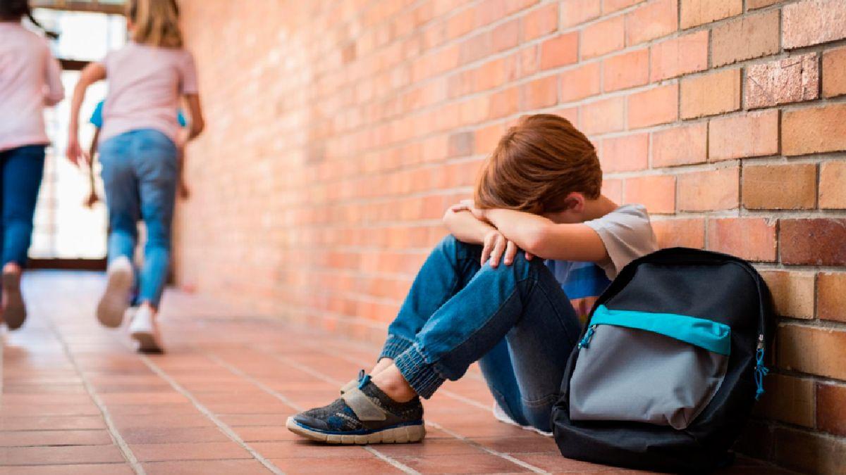 El estudio hace referencia a las capacidades de niñas y niños de controlar sus emociones y poder vincularse con sus pares para ser parte de grupos.