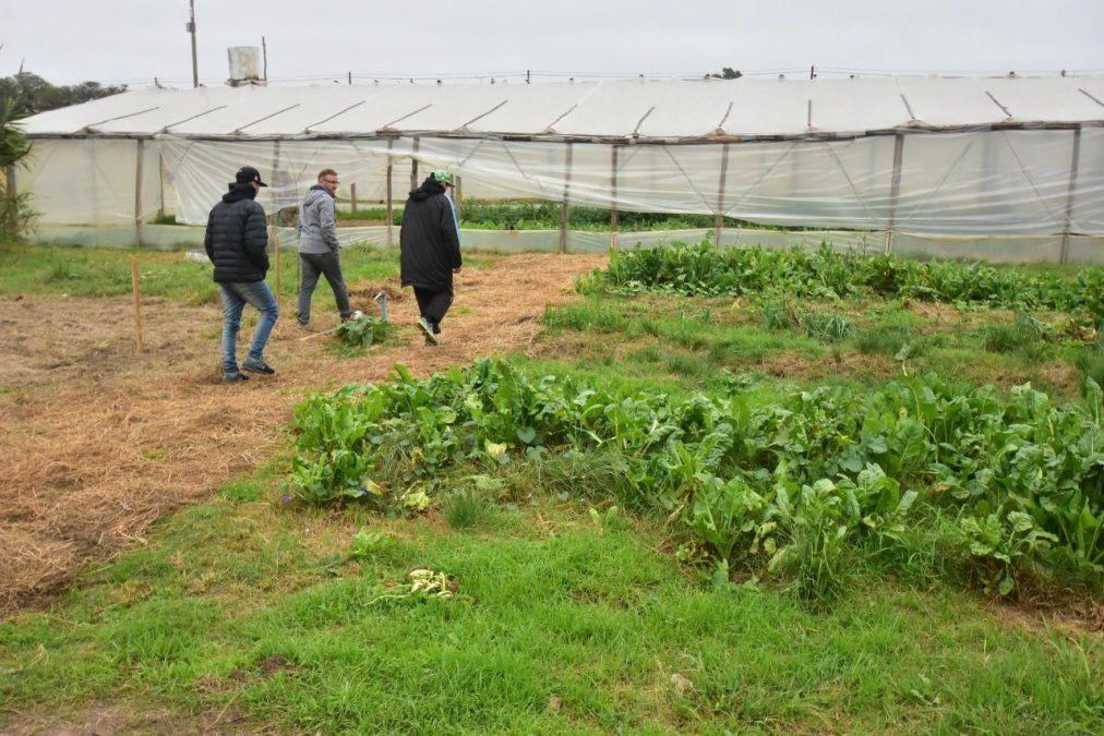 Feria Agroecológica tendrá una nueva edición en la Escuela Granja