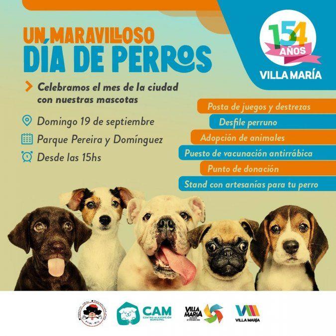 Realizarán la actividad Un Maravilloso Día de Perros