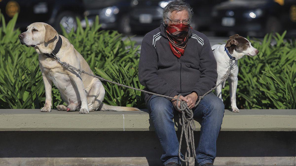 Coronavirus en Argentina: reportan 110 nuevas muertes.
